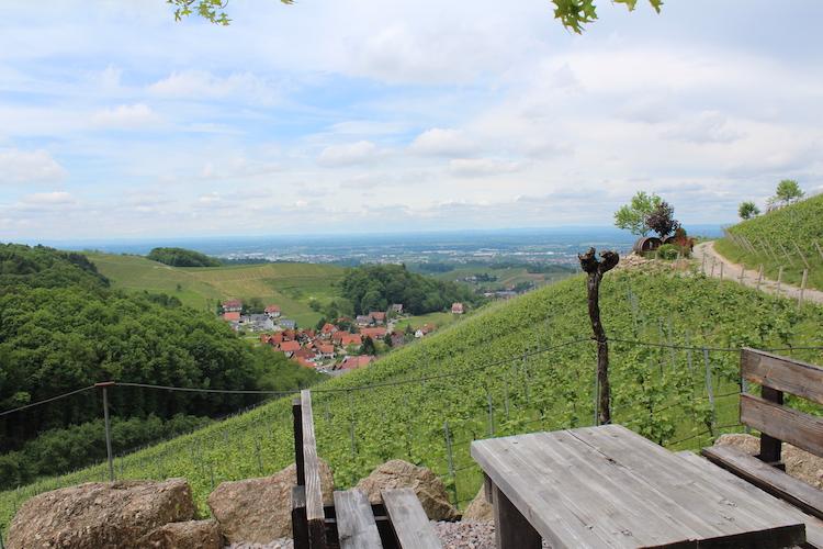 Scheurebenplatz › Schlafen im Weinfass